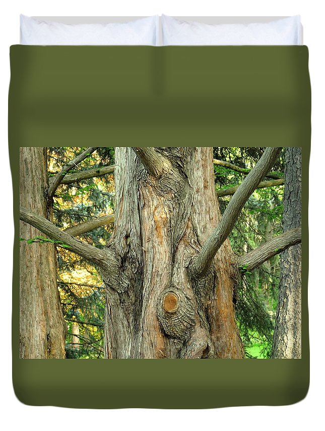 Tree Duvet Cover featuring the photograph Knarled by Ian MacDonald