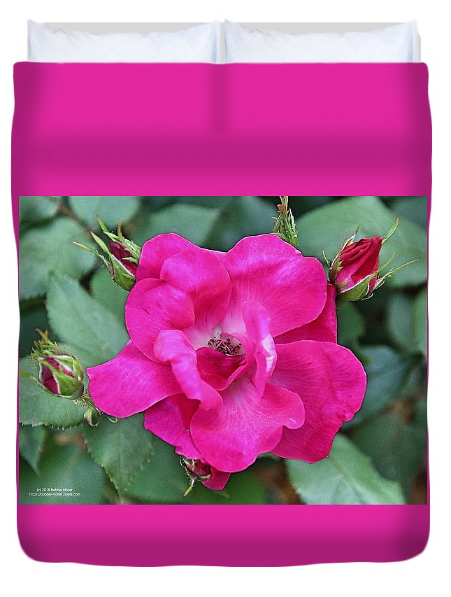 Flowers Duvet Cover featuring the photograph Knockout Rose Surrounded By Buds by Bobbie Moller