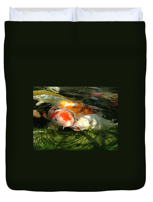 Koi Duvet Cover featuring the photograph Koi Ripples by Heather Lennox