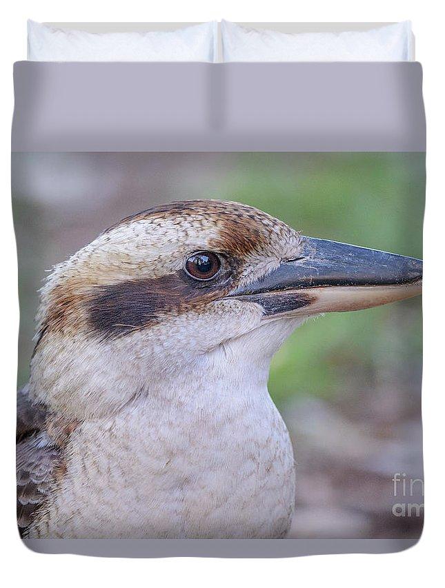 Kookaburra Duvet Cover featuring the photograph Kookaburra 12 by Werner Padarin