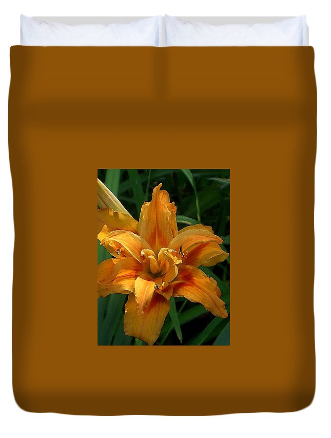 Daylily Duvet Cover featuring the photograph Kwanzaa Lily Watercolor by Carolyn Jacob