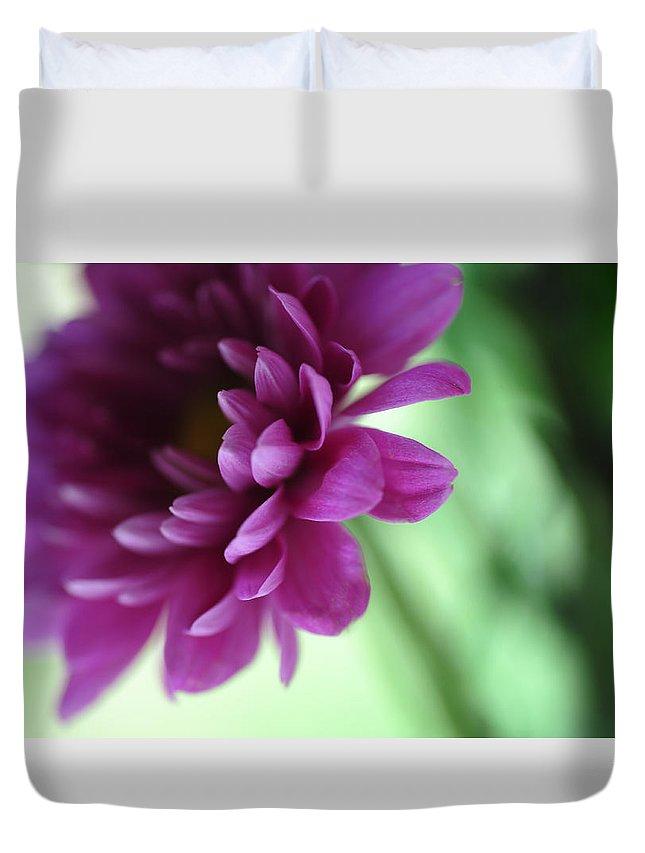 Chrysanthemum Duvet Cover featuring the photograph La Fleur De L' Amour by Jenny Rainbow