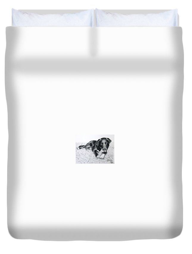 Dog Duvet Cover featuring the drawing Labrador Samy by Nicole Zeug