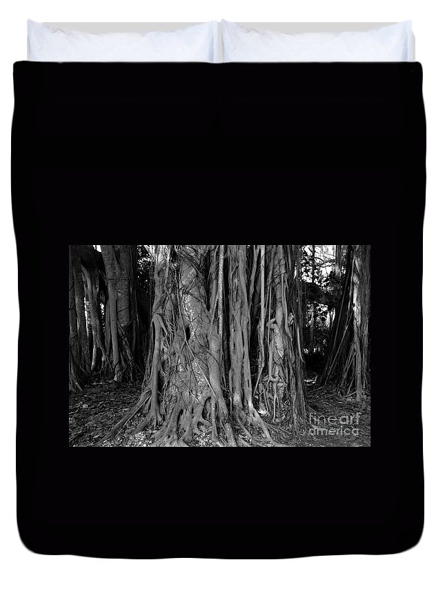 Banyan Trees Duvet Cover featuring the photograph Lady In The Banyans by David Lee Thompson