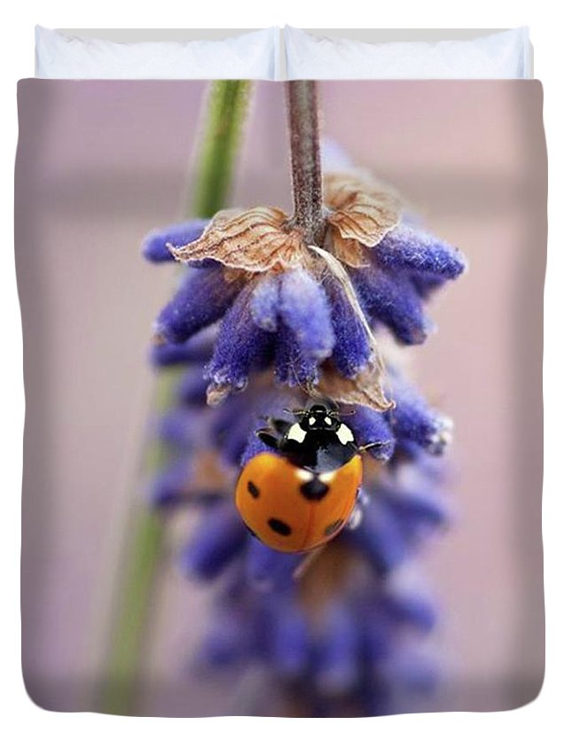Macro Duvet Covers