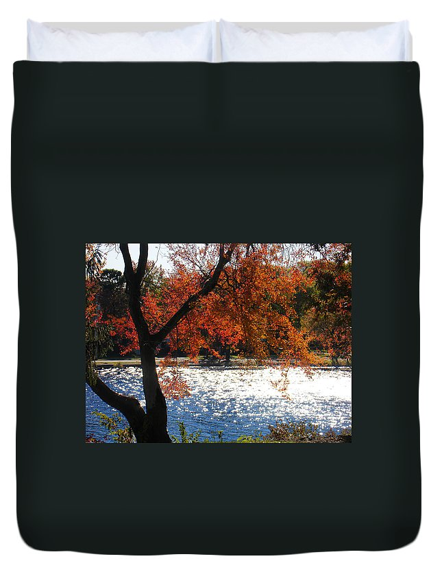 Landscape Duvet Cover featuring the photograph Lakewood by Steve Karol