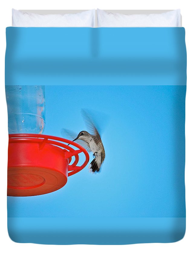 Hummingbirds Duvet Cover featuring the photograph Landing by Donna Shahan