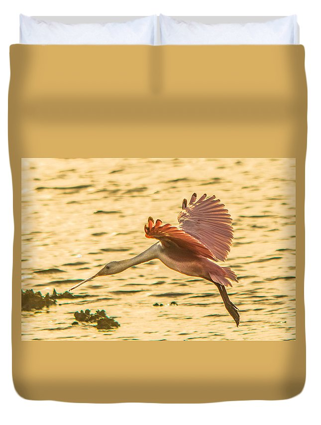 Pink White Golden Feet Outstretched Wingtips Landing Evening Dusk Twilight Sunset Waves Water Rocks Brown Detailed Florida Bird Coastal Serene Sensual Tranquil Peaceful Nature Outdoors Duvet Cover featuring the photograph Landing Form by Karl Mahnke