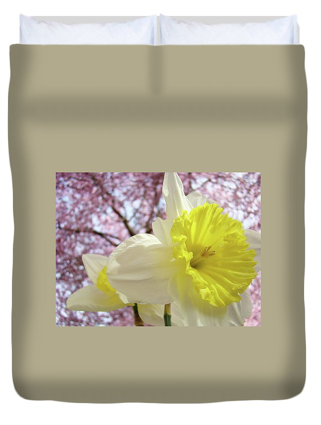 Trees Duvet Cover featuring the photograph LANDSCAPE Daffodils Flowers Art Pink Tree Blossoms Spring Baslee by Baslee Troutman