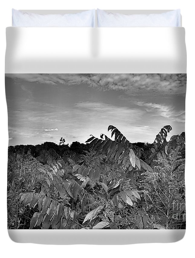 Landscape Duvet Cover featuring the photograph Landscape In Contrast by Ronald Searl