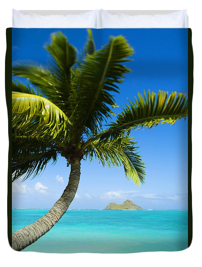 Afternoon Duvet Cover featuring the photograph Lanikai Palm by Dana Edmunds - Printscapes