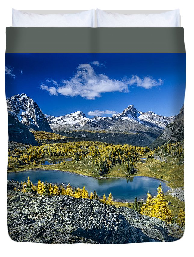British Columbia Duvet Cover featuring the photograph Larch Majesty by Howie Garber