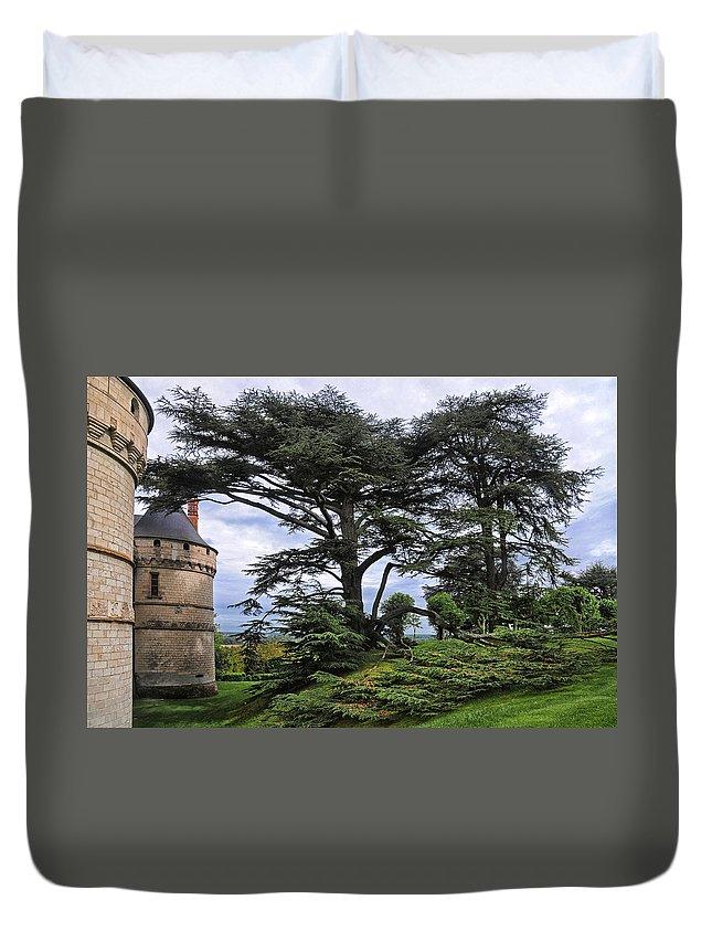 Chateau De Chaumont Duvet Cover featuring the photograph Large Trees At Chateau De Chaumont by Dave Mills