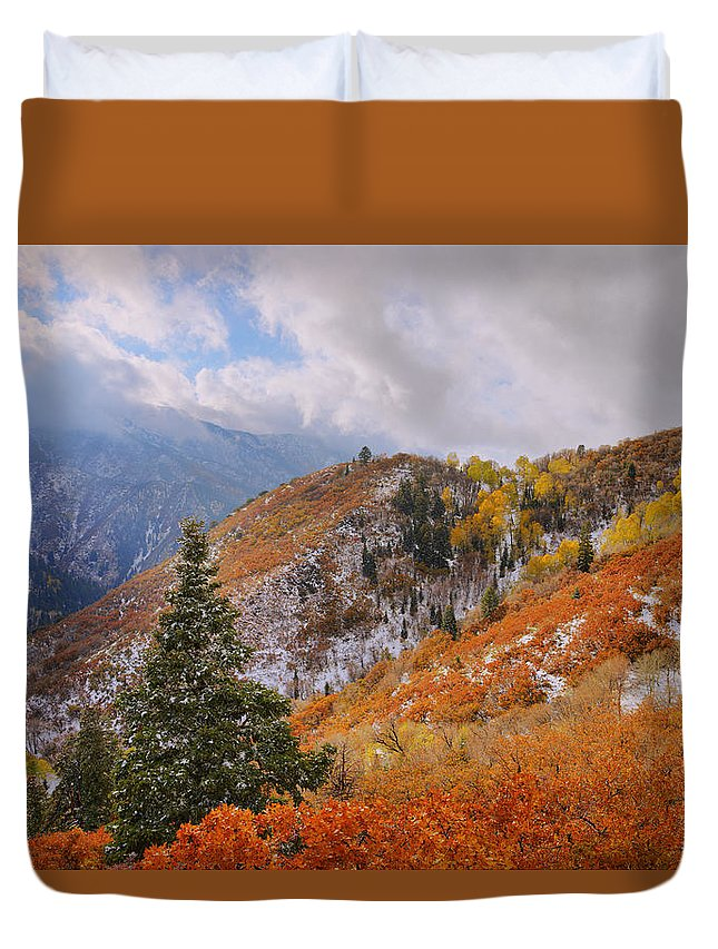 Forest Duvet Cover featuring the photograph Last Fall by Chad Dutson