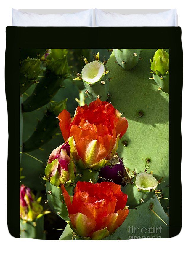 Arizona Duvet Cover featuring the photograph Late Bloomer by Kathy McClure