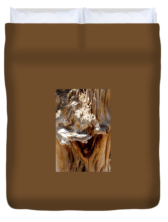 Tree Duvet Cover featuring the photograph Laughing Tree by Wayne Potrafka