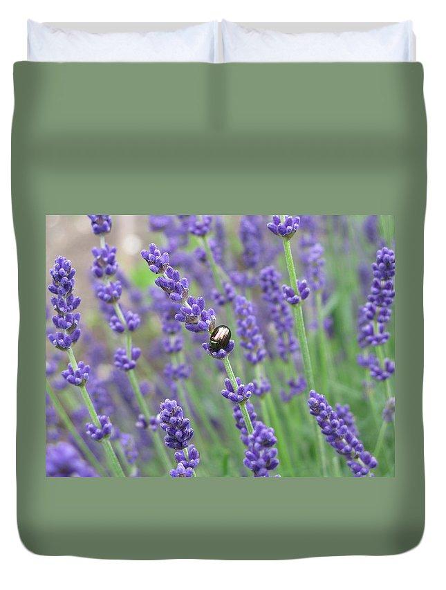 Lavender Duvet Cover featuring the photograph Lavender Beetle by Maria Joy