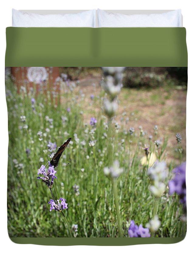Flowers Butterflies Summer Duvet Cover featuring the photograph Lavender Butterflies by Michaela Hughes