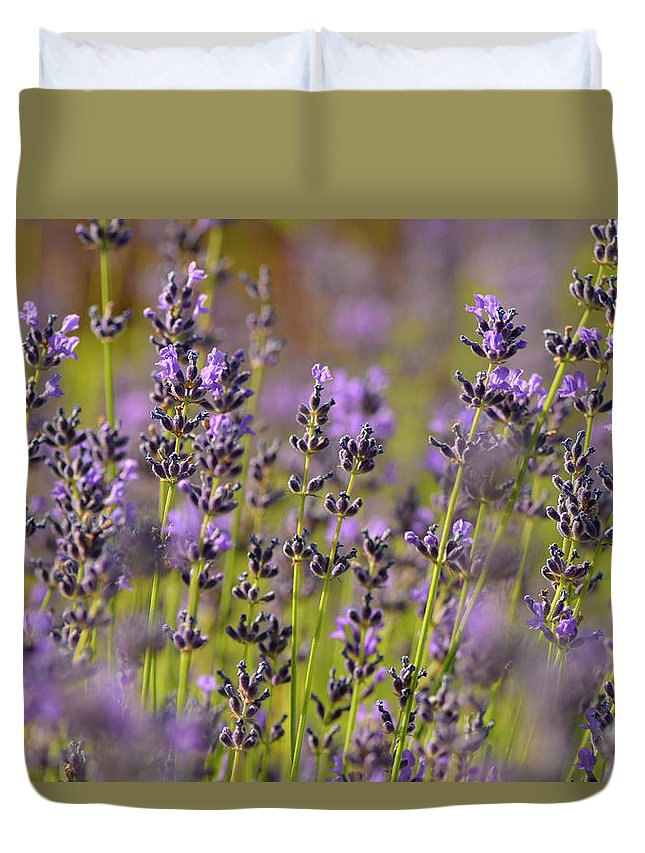 Lavender Duvet Cover featuring the photograph Lavender by Dean Hueber
