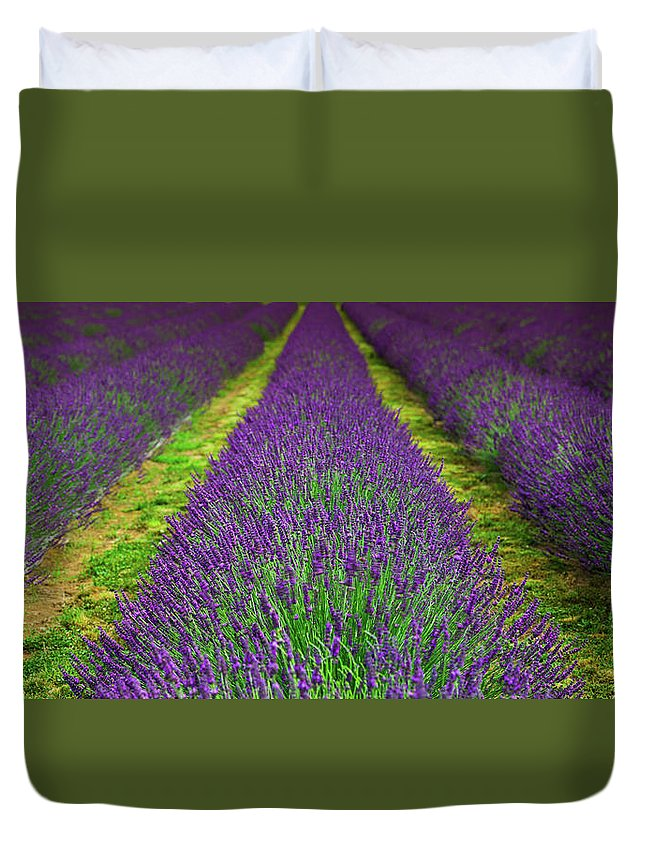 Oregon Duvet Cover featuring the photograph Lavender Dream by Jean-Claude Ardila