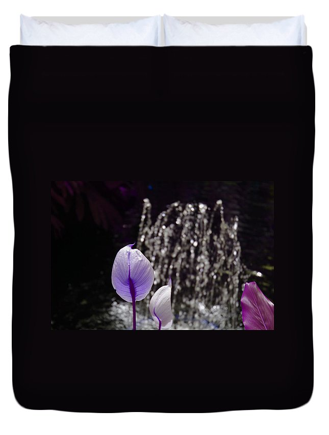 Lavender Duvet Cover featuring the photograph Lavender Flower At Fountain by Alice Markham