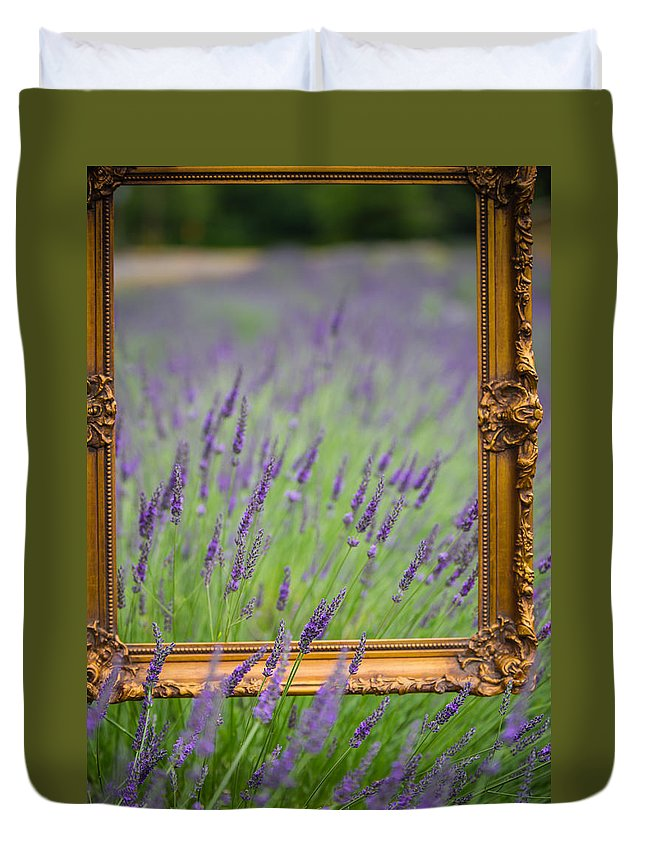 Lavender Field Painted Frame Flowers Purple Duvet Cover featuring the photograph Lavender Frame by Rick Takagi