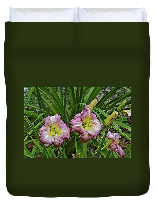 Lavender Duvet Cover featuring the photograph Lavender Lily Triad by Douglas Barnett