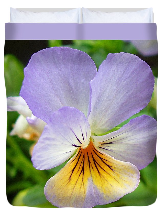 Pansy Duvet Cover featuring the photograph Lavender Pansy by Nancy Mueller