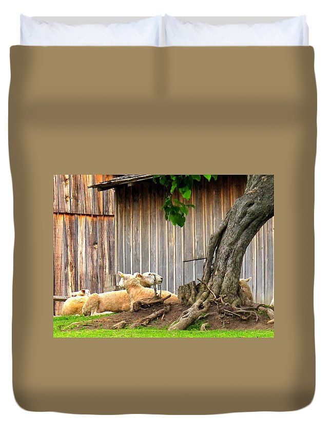 Sheep Duvet Cover featuring the photograph Lawnmowers At Rest by Ian MacDonald