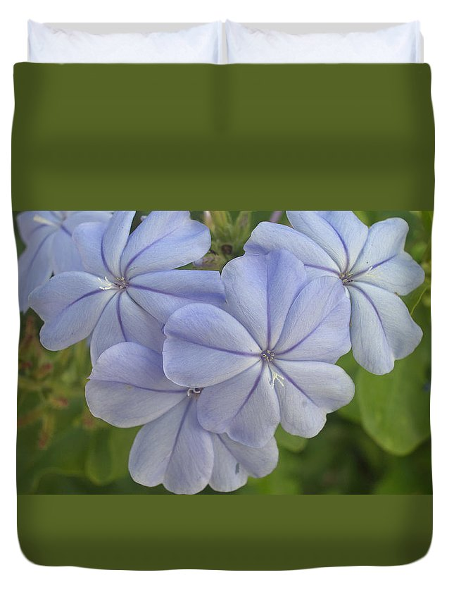 Floral Duvet Cover featuring the photograph Leadwort by JT Kramer
