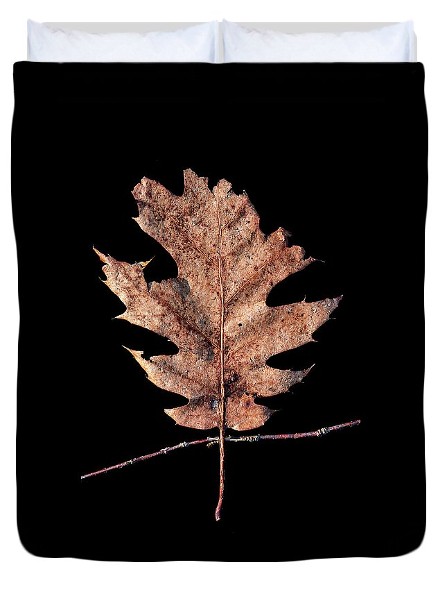 Leaves Duvet Cover featuring the photograph Leaf 22 by David J Bookbinder