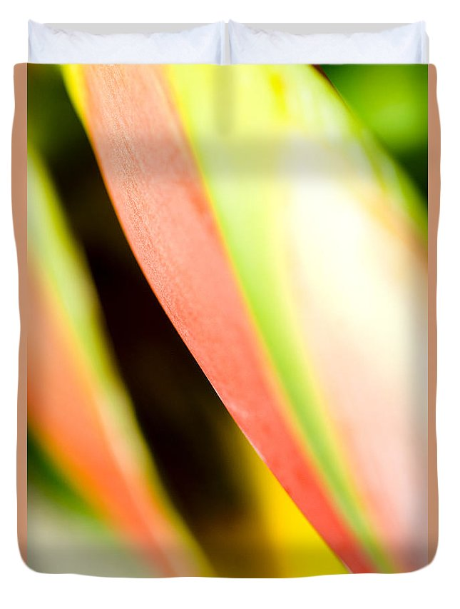 Abstract Duvet Cover featuring the photograph Leaf Abstract by Ray Laskowitz - Printscapes