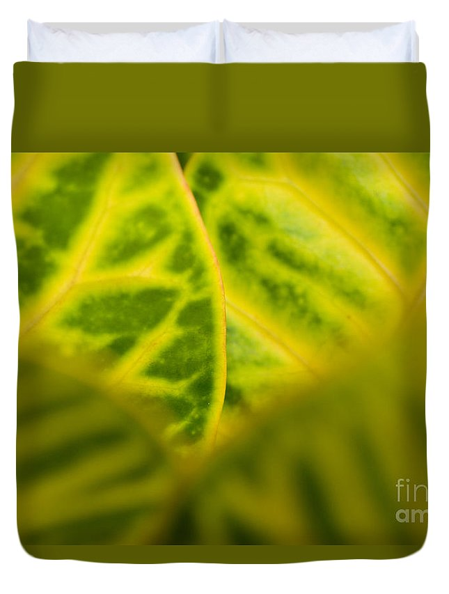 83-pfs0192 Duvet Cover featuring the photograph Leaf Abstract by Ray Laskowitz - Printscapes