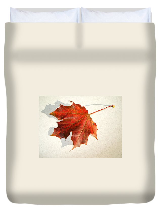 Leaf Duvet Cover featuring the photograph Leaf by Cliff Norton