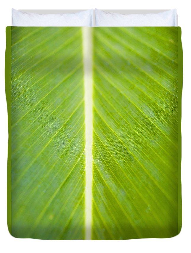 Botanical Duvet Cover featuring the photograph Leaf Close-up by Tomas del Amo - Printscapes