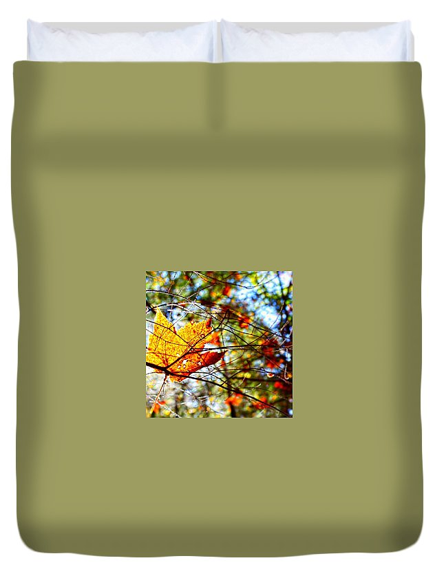 Leaf Duvet Cover featuring the photograph Leaf by Drue DeMatteis