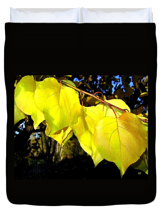 Apricot Leaves Duvet Cover featuring the photograph Leaf Line by Will Borden