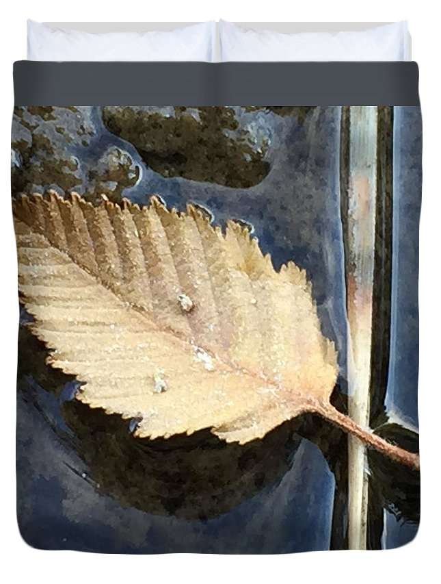 Leaf Duvet Cover featuring the photograph Leaf on Water by Vonda Drees