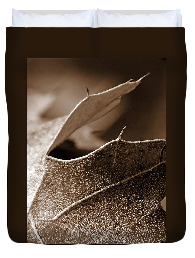 Macro Duvet Cover featuring the photograph Leaf Study In Sepia II by Lauren Radke