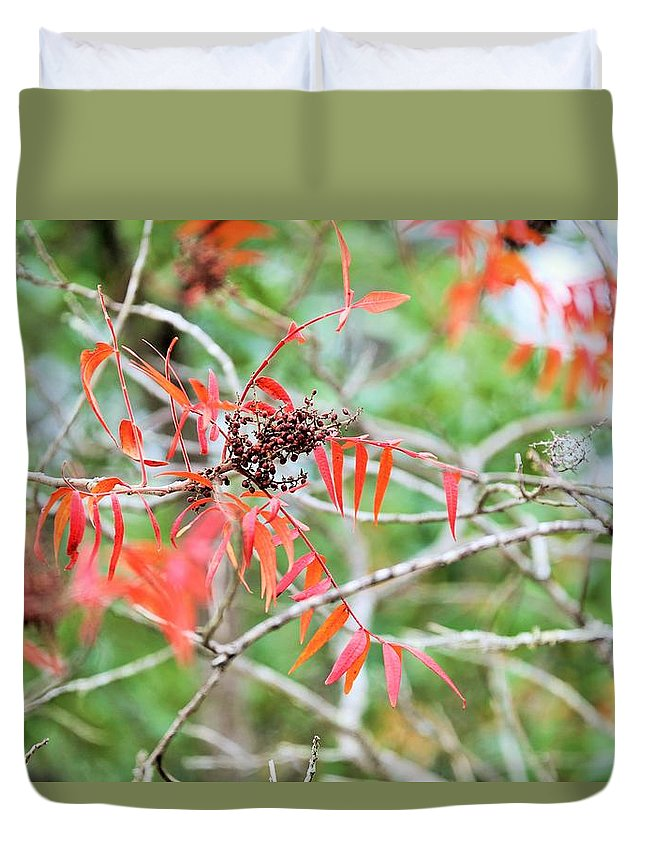 Duvet Cover featuring the photograph Leafs 004 by Jeff Downs