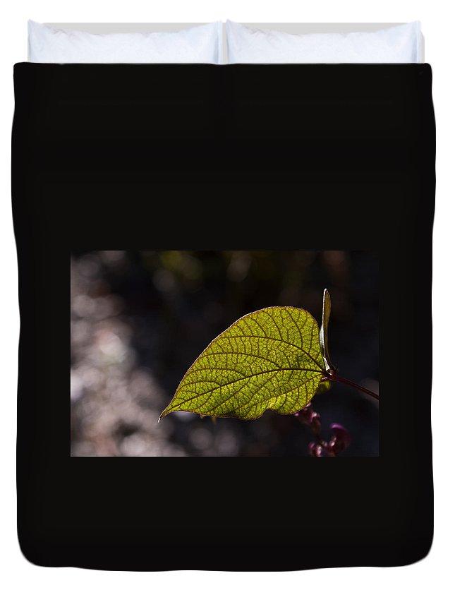 Leaf Duvet Cover featuring the photograph Leav Venation by Douglas Barnett