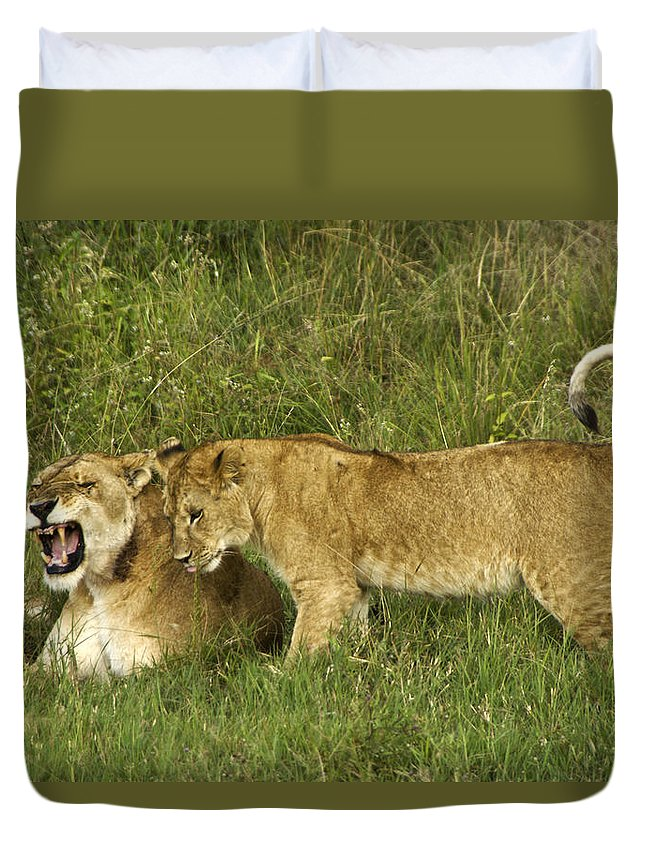 Africa Duvet Cover featuring the photograph Leave Me Alone by Michele Burgess