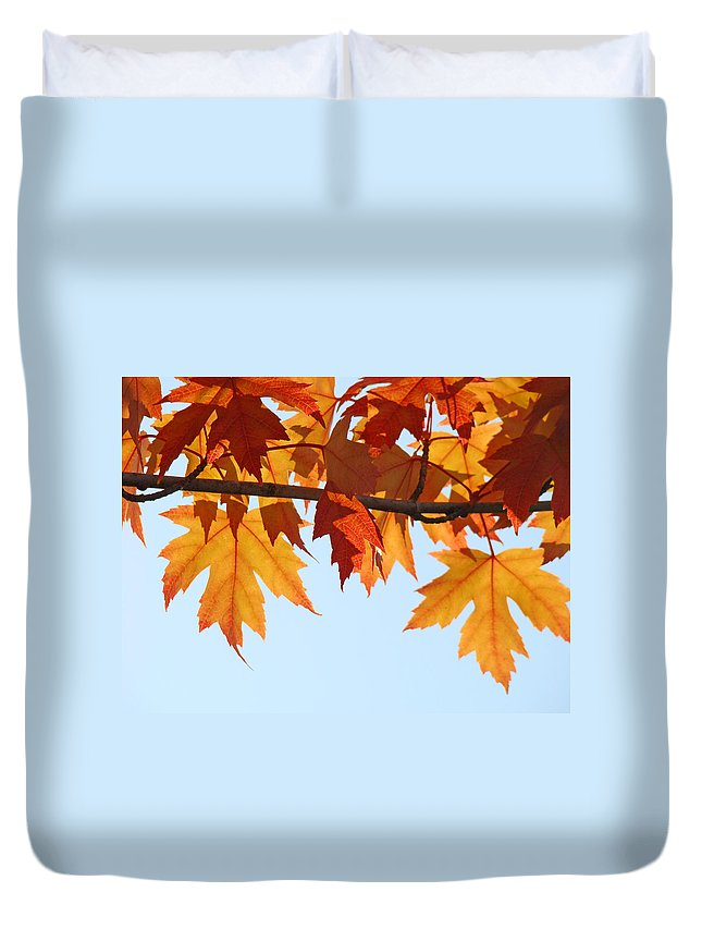 Autumn Duvet Cover featuring the photograph Leaves Autumn Orange Sunlit Fall Leaves Blue Sky Baslee Troutman by Baslee Troutman