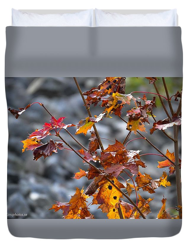 Duvet Cover featuring the photograph Leaves Of Fall by Stefan Pettersson