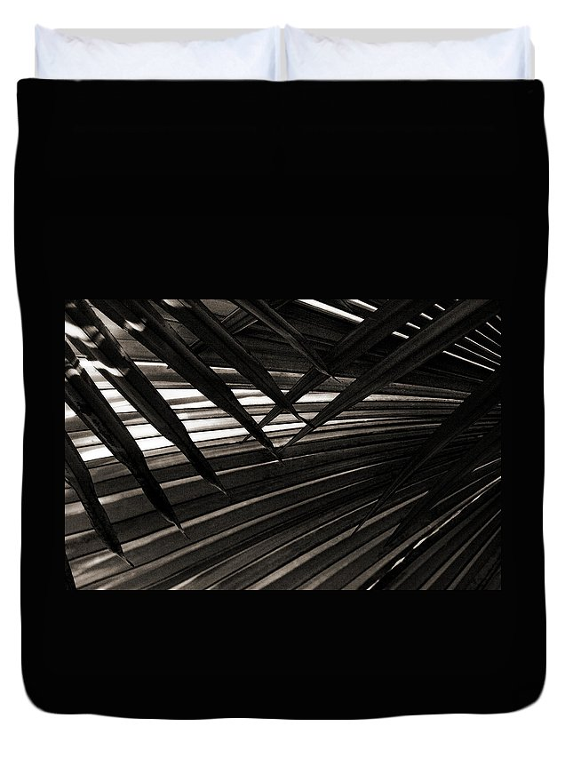 Palm Duvet Cover featuring the photograph Leaves Of Palm Black And White by Marilyn Hunt
