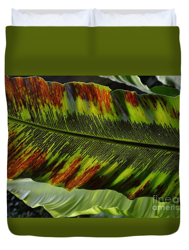 Duvet Cover featuring the photograph Leaving by Virginia Levasseur
