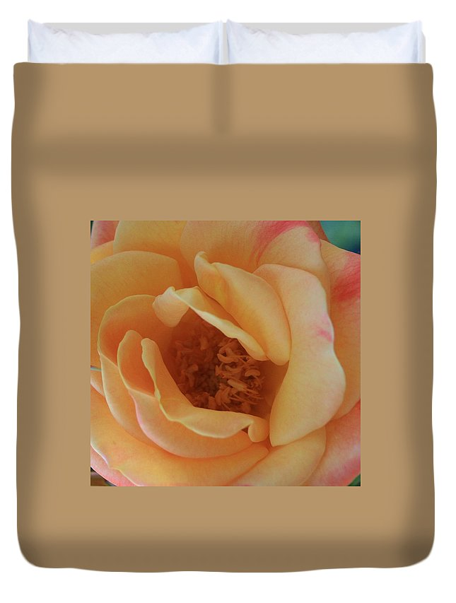 Lemon Duvet Cover featuring the photograph Lemon Blush Rose by Marna Edwards Flavell
