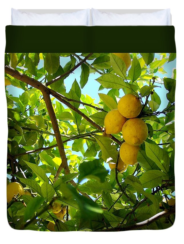 Lemons Duvet Cover featuring the photograph Lemon Tree by Christopher Rowlands
