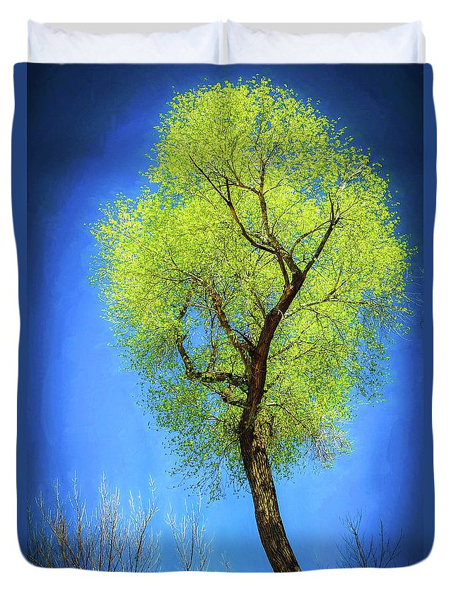 Yellow Duvet Cover featuring the photograph Lemon Tree by Will Wagner