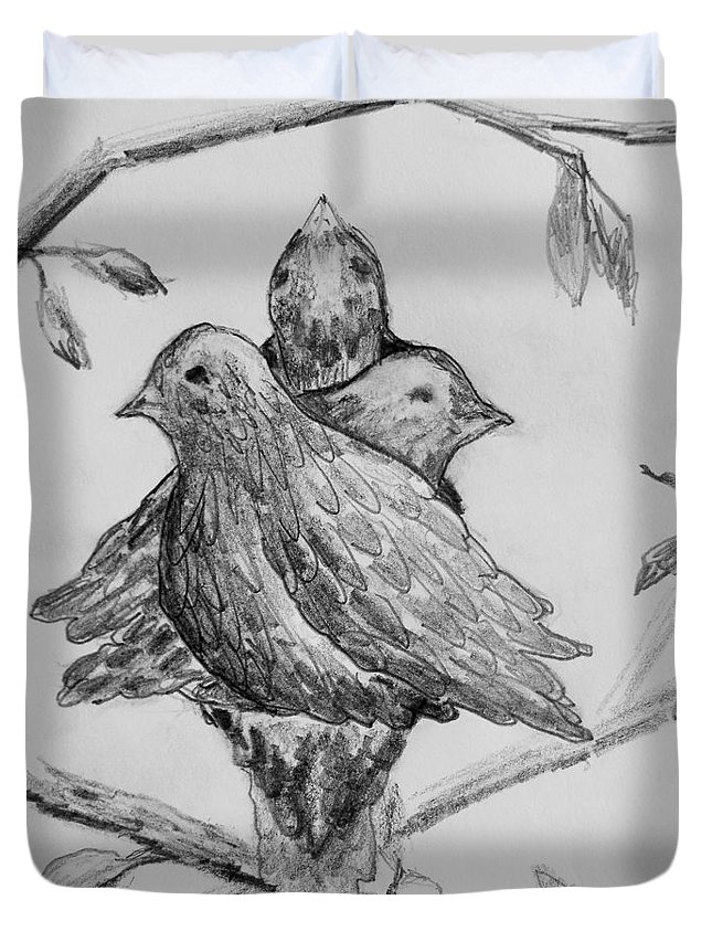 Birds Duvet Cover featuring the drawing Les Trois Oiseaux by Catherine Sprague